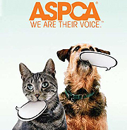 ASPCA graphic